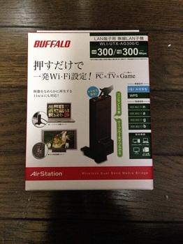 buffalo_musen.JPG